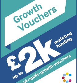 Apply for a Government £2,000 Growth voucher for marketing and digital technology