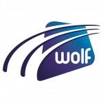 Wolf IT logo